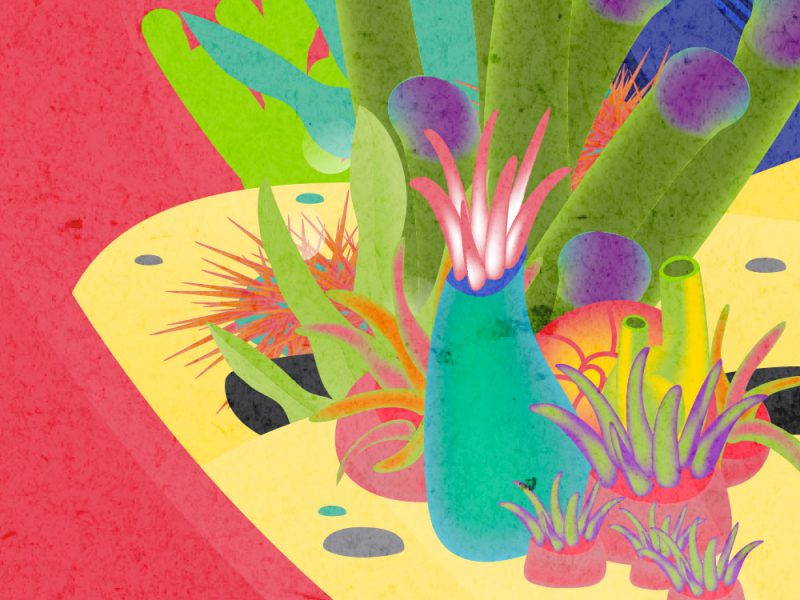 lenovo illustration Aquapop 2